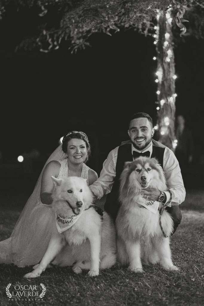 Wedding Night Portrait, london Ontario Wedding Photography
